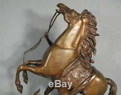 Daprès Coustou Cheval De Marly Sculpture Ancienne Bronze