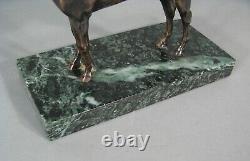 Kaolin Cheval Étalon Pur-sang Sculpture Bronze Ancien (d'après) Alfred Dubucand